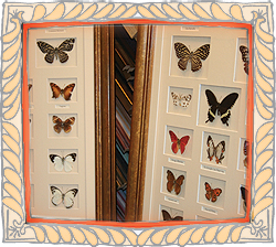 The Picture Framing Shop - fimo